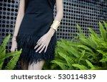 Fashion Woman Wearing Sparklin...