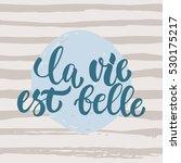la vie est belle   hand drawn... | Shutterstock .eps vector #530175217