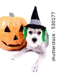 happy halloween | Shutterstock . vector #530177