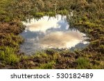 puddle in autumn colors | Shutterstock . vector #530182489