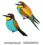 bee eater bird  vector... | Shutterstock .eps vector #530206951