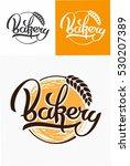 hand drawn calligraphy...   Shutterstock .eps vector #530207389