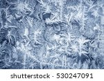 Ornate Frost Pattern On Froste...