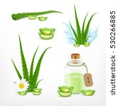 Aloe. Vector Icons Set. Eps10