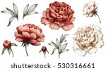 Stock photo set vintage watercolor elements of red and white peonies collection garden flowers leaves 530316661