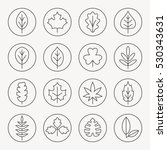 leaves thin line icon set | Shutterstock .eps vector #530343631