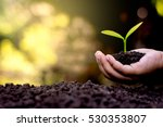 the hand of a children are... | Shutterstock . vector #530353807