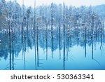blue pond | Shutterstock . vector #530363341