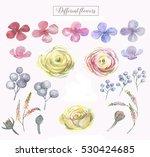 hand drawn watercolor set of... | Shutterstock . vector #530424685
