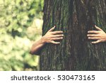 human and nature contact  | Shutterstock . vector #530473165