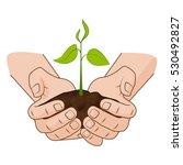 growing plant in handful soil...   Shutterstock .eps vector #530492827