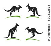 Kangaroo Set. Vector