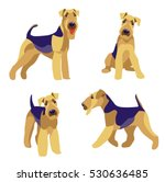 Airedale Terrier Dogs Set On A...