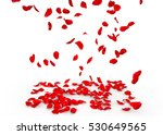 Stock photo rose petals fall to the floor isolated background 530649565