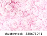 Stock photo blurred of sweet roses in pastel color style on soft blur bokeh texture for background 530678041