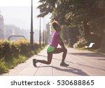 young beautiful african... | Shutterstock . vector #530688865