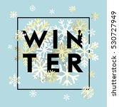 elegant black winter lettering... | Shutterstock .eps vector #530727949