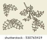 set of christmas flowers... | Shutterstock .eps vector #530765419