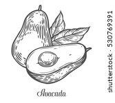 Avocado Slice Hand Drawn...
