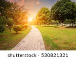 path to the tortuous path ahead ... | Shutterstock . vector #530821321