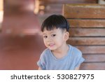 little boy in the nature park. | Shutterstock . vector #530827975