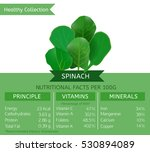 spinach health benefits. vector ...   Shutterstock .eps vector #530894089