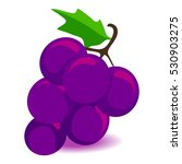 vector illustration of bunch of ... | Shutterstock .eps vector #530903275