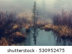 Misty Mountain Lake In The...