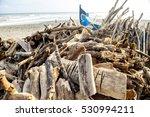 driftwood collection on beach...   Shutterstock . vector #530994211