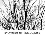 abstract silhouette black and... | Shutterstock . vector #531022351