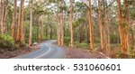 the caves road winds through... | Shutterstock . vector #531060601