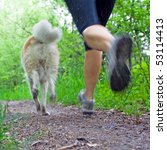Stock photo young woman running with akita dog in summer forest motion blur 53114413