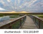 boardwalk winding through a... | Shutterstock . vector #531181849