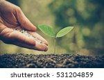 Agriculture   Nurturing Baby...