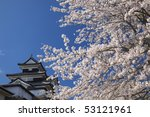 castle | Shutterstock . vector #53121961