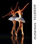 unrecognizable ballet dancers | Shutterstock . vector #531305359