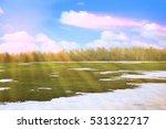 Spring Landscape Snow Melt In...