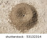 Close Up Image Of Anthill In...
