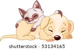 Stock vector cute puppy and adorable kitten are sleeping 53134165