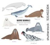 marine mammals set of greenland ... | Shutterstock .eps vector #531402304