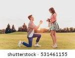 Young Man Makes A Proposal Of...