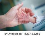 premature baby in an incubator... | Shutterstock . vector #531482251