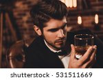 portrait of rich handsome man...   Shutterstock . vector #531511669