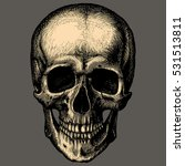 human skull over gray... | Shutterstock .eps vector #531513811