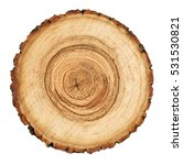 wooden stump isolated on the... | Shutterstock . vector #531530821