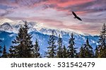 winter mountains panorama of... | Shutterstock . vector #531542479