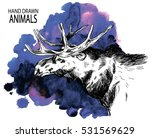 the head of an adult moose. ...   Shutterstock .eps vector #531569629