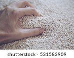 blurry of hand grab on nylon... | Shutterstock . vector #531583909