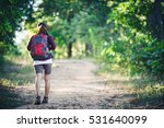 rear of young woman hiker with... | Shutterstock . vector #531640099