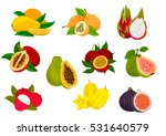 exotic fruit isolated icon set... | Shutterstock .eps vector #531640579